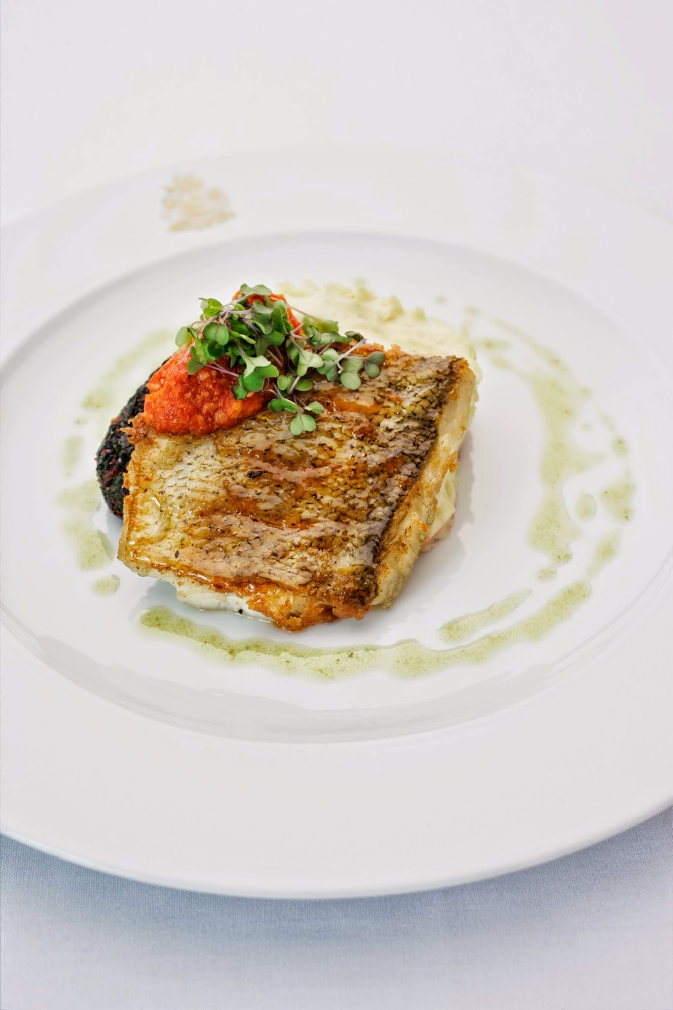 Food_RCMI_Salmon_dish